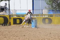 Anglų lietuvių žodynas. Žodis rodeos reiškia <li>rodeo</li> lietuviškai.