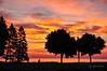 Fire in the sky (John Prior 55 - slowly catching up!) Tags: silhouettes photographers burlington ontario lakeontario sunrise