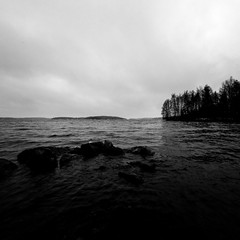 Gloomy fall (KariFinland) Tags: 5dmk2 sigma 1224mm bw fall dark monochrome