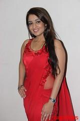 Kannada Times_Nikita Thukral_099