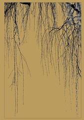 willows~~HSS (Wendy:) Tags: hss branches gold snow willows christmas card 2107