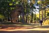 [ #362 :: 2017 ] (Salva Mira) Tags: ciudadencantada conca cuenca natura nature naturaleza passeig paseo walk salva salvamira salvadormira