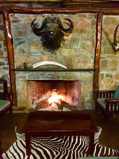 Zimbabwe Cape Buffalo Hunt 64