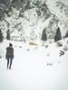 Walking in the winter wonderland... (davYd&s4rah) Tags: snow winter wonderland winterwonderland december dezember germany deutschland bavaria alps alpen breitenstein schleching chiemgau hütte hut cabin birthday cold hill mountain berg olympus epl7 m45mm f18 olympusm45mmf18 hiking