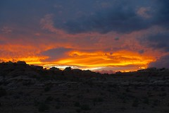 Sunset in the Needles District (Sean Munson) Tags: canyonlandsnationalpark canyonlands nationalpark sunset theneedlesdistrict needlesdistrict landscape