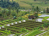 A House on the Hill (monojussi) Tags: bali jatiluwih indonesia subak terraces