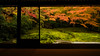 Rurikouin -瑠璃光院- (chikuma_riv) Tags: japan nature landscape river lake mountain forest flower sunset sunrise spring summer autumn winter leaves kyoto