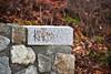 Bowker Creek walkway graffiti (ngawangchodron) Tags: victoriagridproject m31 oakbay victoria bc canada vancouverisland