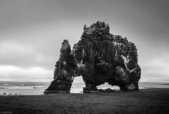 Hvítserkur Troll Rock - Iceland (Toine B.) Tags: hvitserkur troll rock beach black sand plage sable noir landscape paysage iceland islande nikon d750 tamronsp2470mmf28divcusd tamron 2470 blackandwhite white bnw noiretblanc noirblanc