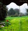 Moeche (Moordenaar) Tags: sony a6000 canonfd50mm18 moeche galicia coruña españa ilce6000 naturaleza rural aldea lluevia