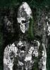 Aonghus na Gaoithe (Rhisiart Hincks) Tags: alba yralban broskos ecosse eskozia schottland schotland أسكتلندا苏格兰 šotimaa skócia škotija euritaskotija szkocja skotsko skotlanti scotland anteileansgitheanach isleofskye reilig cill cladh carregfedd gravestone beddfaen hilarri maenbez bered mynwent hilerri graveyard grave bedd bez hilobi uaigh могила кладбище leacuaighe grabstein pierretombale