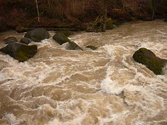 Wildwasser Irreler Wasserfälle (Jörg Paul Kaspari) Tags: irrel irrelerwasserfälle river wild fluss gewässer prüm naturpark südeifel eifel hochwasser video bewegtbild wasserbewegung wasser wilde wildwasser
