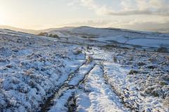 Path to Lantern Pike (Keartona) Tags: path footpath frozen cold snow snowy landscape countryside rural sky beautiful winter december weather rowarth hayfield derbyshire england english scene walk