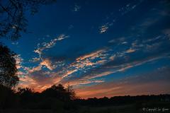 Coucher de soleil à Estampon_7036 (Luc Barré) Tags: soleil sun rays coucher soir coucherdesoleil extérieur landes estampon france