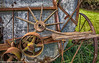 20150617_PALOUSE JUNE 17_20150617-DSC_3121PALOUSE, WASHINGTON (Bonnie Forman-Franco) Tags: barnowl palouse wagonwheelfarm wagonwheels washington abandonedbarns abandonedhomes cats farmequipment lansdscapes trucks