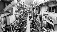 un Bangkok organisé (Lцdо\/іс) Tags: bangkok lцdоіс thailande thailand thailandia thai blackandwhite black asia asian asie blanc noiretblanc noir street