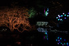 untitled-4587.jpg (Parapan) Tags: botanicalgardens night lights birmingham
