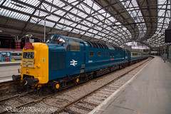 20171230-IMG_9179 (deltic21) Tags: d9009 55009 alycidon deltic class 55 napier br blue railtour railways charter bluegrey liverpool lime street english electric type 5 ee thrash pathfinder tours york rails wheels train trains loco locomotive station roof lms lmr deltics lament trans pennine