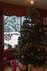 White Christmas in Sammamish (igowerf) Tags: sammamish washington unitedstates us