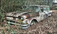 Ford Fairlane Wagon 2 (Photos By Vic) Tags: ford fairlane wagon stationwagon rust rusty abandoned neglected northcarolina nc
