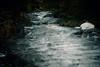 AY6A5533 (fcruse) Tags: cruse crusefoto 2018 vinter canon5dmarkiv natur skog nature forest tyrestanationalpark longexposure stockholm sweden se tyresta