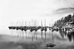 7989-2sm (torriejonvik) Tags: marina pacific north west vancouver british columbia sailboats rocks