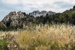 IMG_0828 Country Castell de Castells (jaro-es) Tags: nature natura natur naturewatcher naturemaster naturesfinest canon eos70d españa spanien spain spanelsko bergen montañas mountains landschaft landscape l