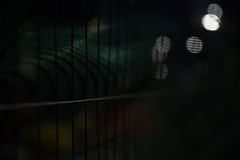 green hippopotamus (mjwpix) Tags: greenhippopotamus wirefencing nighttime fencescreening bokeh michaeljohnwhite mjwpix abstract canoneos5dmarkiii ef2470mmf28liiusm shallowdof