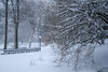 20180104-IMG_2549 (BumbyFoto) Tags: manhattan nyc newyorkcity newyorkstate city citylife citystreet cold coldtemperature frost polarclimate season snow street winter
