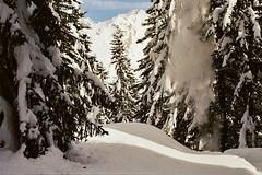 (Rastislav Durica) Tags: analog analogue film kodakgold200 canoneos500n landscape paysage