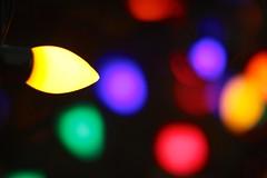 Mt. Pleasant Christmas (dangaken) Tags: lights christmaslights christmas xmas christ jesus festive holiday merrychristmas christmastree mtpleasantmi mtpleasantchristmasfestival dickenschristmasfestival dickens yellow purple 50m 50mmf12 downtownmtpleasant isabellacounty holidaylights c7christmaslights c7lights lightbulb c7bulb red blue orange green c7 dgaken dangaken photobydangaken