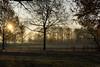 171202_NÜRNBERG_005 (Rainer Spath) Tags: deutschland germany franken nürnberg dutzendteich groserdutzendteich sonnenaufgang sunrise