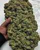 Marijuanasupplier (Marijuanasupplier) Tags: weedvendor weedseller cannabis love peace weeddistributor legit safe reliable deliveries marijuanaservice smokingweed ganja