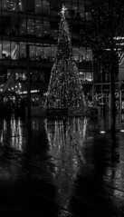 Spinningfields Xmas tree reflected monochrome (PDKImages) Tags: manchester mcr lovemanchester city urban misty fog longexposure light trails reflections xmas xmastree christmastree