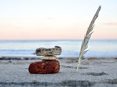 Beach - Feather and Sculture (Just Reed) Tags: challengefactorywinner feather