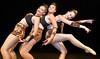 Jete Dance Studio (Peter Jennings 28 Million+ views) Tags: jete dance studio presents spirit africaauckland new zealand peter jennings nz