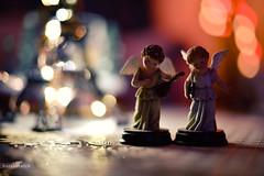 Angels   Philosophy (Crosshatchs) Tags: angels bokeh lights home table closeup 14 nikon d850 green blue wings christmas newyear 2018 spirit soul bokehlious bokehwhore