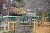 Bowker Creek bridge (ngawangchodron) Tags: victoriagridproject m31 oakbay victoria bc canada vancouverisland bowkercreek