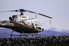 N31MH (trifeman) Tags: 2017 california aircraft canon 7d canon7dmarkii placerville kpvl n31mh eldorado tamron tamron150600mm tamronsp150600mmf563divcusda011 helicopter eurocopter as350
