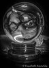 Day 2. (lizzieisdizzy) Tags: blackandwhite blackwhite black whiteandblack white whiteblack wooden wood monochrome mono monotone monochromatic ball crystal crystalball stand plinth upsidedownimage reversed eye glasses face surprise howiemarsh