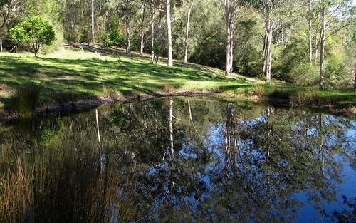 689 Lot 122 Runnyford Road, Nelligen NSW