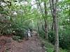Think Outside photo contest Grayson Highlands Park (vastateparksstaff) Tags: horsebackriding cowboyhat trailride mountains scenic trees