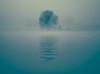 Mist-kissed river (Ingeborg Ruyken) Tags: dropbox autumn mist boom fall flickr 500pxs 2017 empel tree river maas middag natuurfotografie meuse rivier afternoon fog