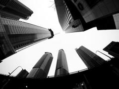 Toronto Skyscrapers (MassiveKontent) Tags: toronto harbourfront noiretblanc blackwhite bw city monochrome urban blackandwhite streetphoto ontario streetphotography bwphotography streetshot gopro fisheye