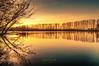 Naturschutzgebiet Bislicher Insel (nigel_xf) Tags: bislicherinsel auen auenlandschaft natur nature sonne sun sunrise sonnenuntergang abendsonne ginderich wesel xanten niederrhein naturschutzgebiet orange bäume see lake trees nikon d300 nigel nigelxf vsfototeam wasser water spiegelung reflexion reflection