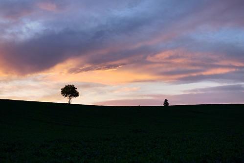 Nord Isère - campagne - lever de soleil
