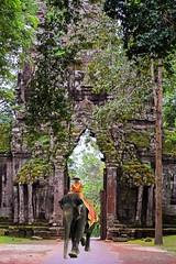 Angkor, Cambodia, 2012 (Photox0906) Tags: asie cambodge indochine cambodia cambodian elephant angkor indochina asia siemreap mahut jungle green ancient temple entrance gate unesco worldheritage asian site landmark