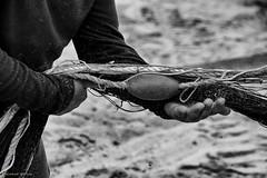 DSC_4157 s (ahcravo gorim) Tags: mar mãos torreira xávega ahcravo gorim