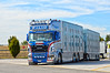 Scania R580 V8 Zilio Livestock (Samuele Trevisanello) Tags: scania r580 v8 zilio livestock v 8 r 580 transport italia veneto brescia est international truck trucks day scaniapower fotobyst nikon d3200 holland style white look light michelin