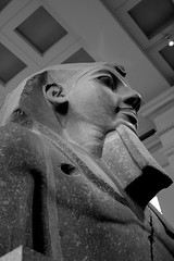 IMG_3948.jpg (Bri74) Tags: animals archeology birds britishmuseum bw egyptian goose london sculpture statue unitedkingdom